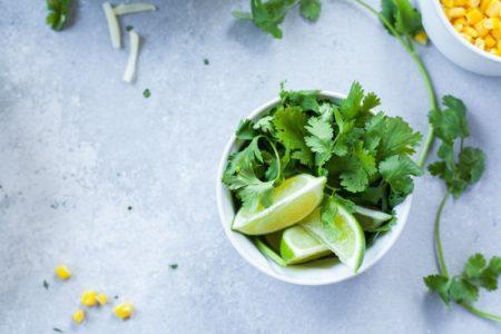Plantes aromatiques : le persil